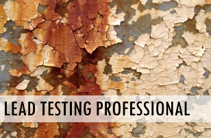 lead testing professional